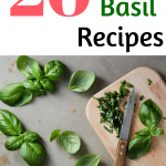 fresh basil recipes