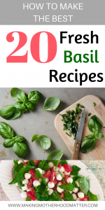fresh basil recipes 20 of the best