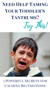how to handle toddler tantrums in public